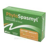 Phytospasmyl Caps B/60 à SAINT-JEAN-DE-LIVERSAY