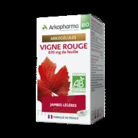 Arkogélules Vigne Rouge Bio Gélules Fl/45 à SAINT-JEAN-DE-LIVERSAY