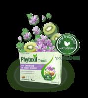 Phytoxil Transit Comprimés B/20 à SAINT-JEAN-DE-LIVERSAY