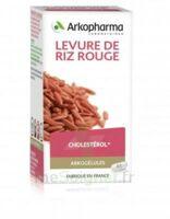 Arkogélules Levure De Riz Rouge Gélules Fl/45 à SAINT-JEAN-DE-LIVERSAY