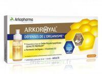 Arkoroyal Défenses Naturelles Gelée Adulte 7 Doses/10ml à SAINT-JEAN-DE-LIVERSAY