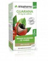 Arkogélules Guarana Bio Gélules Fl/45 à SAINT-JEAN-DE-LIVERSAY