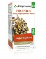 Arkogélules Propolis Bio Gélules Fl/45 à SAINT-JEAN-DE-LIVERSAY