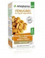 Arkogélules Fenugrec Bio Gélules Fl/40 à SAINT-JEAN-DE-LIVERSAY