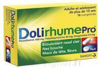 Dolirhumepro Cpr Plq/16 à SAINT-JEAN-DE-LIVERSAY