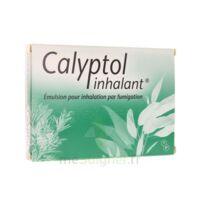 Calyptol Inhalant, émulsion Pour Inhalation Par Fumigation à SAINT-JEAN-DE-LIVERSAY
