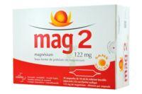 Mag 2 122 Mg S Buv En Ampoule Sans Sucre édulcoré à La Saccharine Sodique 30amp/10ml à SAINT-JEAN-DE-LIVERSAY