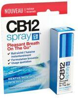 Cb 12 Spray Haleine Fraîche 15ml à SAINT-JEAN-DE-LIVERSAY