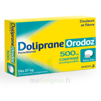 Dolipraneorodoz 500 Mg, Comprimé Orodispersible à SAINT-JEAN-DE-LIVERSAY