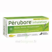 Perubore Caps Inhalation Par Vapeur Inhalation Plq/15 à SAINT-JEAN-DE-LIVERSAY