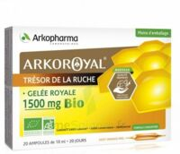 Arkoroyal Gelée Royale Bio 1500 Mg Solution Buvable 20 Ampoules/10ml à SAINT-JEAN-DE-LIVERSAY