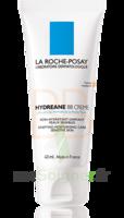 Hydreane Bb Crème Crème Teintée Rose 40ml à SAINT-JEAN-DE-LIVERSAY