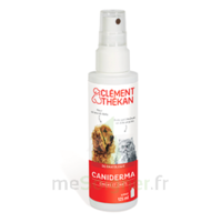 Clément Thékan Caniderma Solution Externe Cicatrisant Spray/125ml à SAINT-JEAN-DE-LIVERSAY