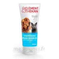 Clément Thékan Shampooing Peaux Sensibles T/200ml à SAINT-JEAN-DE-LIVERSAY
