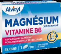 Govital Magnésium Vitamine B6 Comprimés B/45 à SAINT-JEAN-DE-LIVERSAY