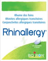 Boiron Rhinallergy Comprimés B/40 à SAINT-JEAN-DE-LIVERSAY