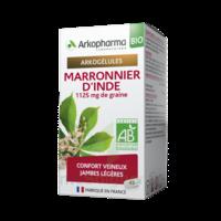 Arkogélules Marronnier D'inde Bio Gélules Fl/45 à SAINT-JEAN-DE-LIVERSAY