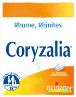 Boiron Coryzalia Comprimés Orodispersibles à SAINT-JEAN-DE-LIVERSAY